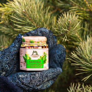 Варенье из сосновых шишек с ядром кедрового ореха