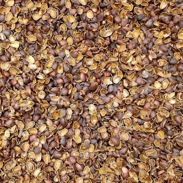 Скорлупа (мульча, шелуха) кедрового ореха 1 кг